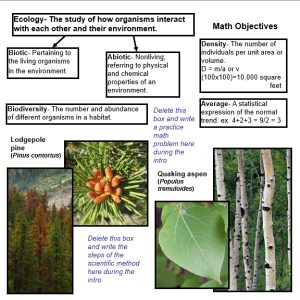 Forest Ecology Poster